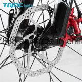 긴 여행 자전거 편리한 자전거 또는 남자