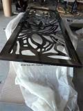 Нутряной декоративный экран нержавеющей стали с рамкой