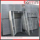 Armatura d'acciaio galvanizzata del blocco per grafici della scaletta per costruzione
