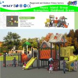 Novo Design Outdoor Parque infantil com Housetop (M15-0016)
