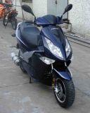 Motorino (JL150T-7)