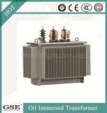 tipo trasformatore chiuso ermeticamente dell'olio 100kVA fatto nella marca di Gse