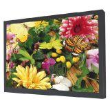 55 인치 - 높은 밝은 LED 역광선 LCD 감시자 (LMB550WH)