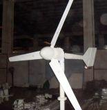 300W de horizontale Generator van de Wind van Assen