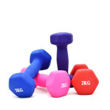Hot Selling High Quality Portable Weight Lifting Dumbbell voor vrouwen