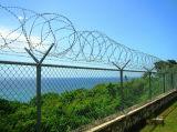 Maillon de chaîne d'escrime de haute sécurité/la sécurité des prisons du rasoir de clôture de barbelés fr1