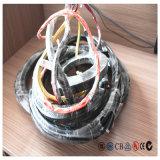 Cable eléctrico de la Ronda de 4 núcleos