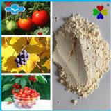 Promover o crescimento da planta CAS 77-06-5 Giberelina