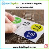 Настраиваемый логотип печати 13.56Мгц NFC Ntag 216 Smart RFID метка