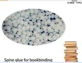 Cola de la columna vertebral del libro