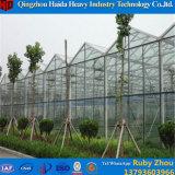 Fabrik-Preis-Glasgewächshaus mit Wasserkultursystem