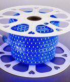 Hight 질 SMD 2835 파랑 회로판 LED 지구
