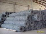 Treillis métallique hexagonal galvanisé par électro d'usine de la Chine