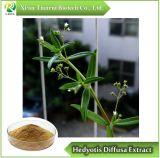 10:1 della polvere dell'estratto di Hedyotis Diffusa