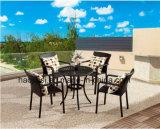 /Rattan extérieur/jeu &Table de présidence de rotin meubles de jardin/patio/hôtel (HS1212C et HS6210DT)