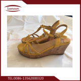 [هيغقوليتي] وتشكيل من يصدق إفريقيا يستعمل أحذية