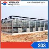Выбросов парниковых газов из стекла для выращивания овощей и цветов растущих
