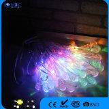 Lumière solaire de chaîne de caractères de qualité de festival multicolore gentil de Noël