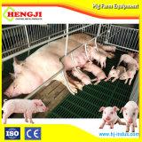 Горячая продажа Pig Farrowing питателя