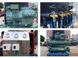 Automatische industrielle/große essbare Block-Eis-Maschine/Hersteller mit Ce/ISO9001 genehmigt