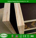 直面される防水フィルムが付いている構築の型枠のパネルおよび建物フレームワークのためのポプラのコア