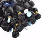 L'alta qualità Brazillian del commercio all'ingrosso di estensione dei capelli umani slaccia riccio