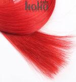 プロ直毛24のインチのケラチンUの先端のブラジルの人間の毛髪の拡張