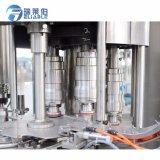 Machine de remplissage de bouteilles de l'eau de seltz pour les boissons non alcoolisées de mise en bouteilles