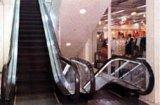 Passagier-Aufzug u. Rolltreppe