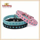 Beaux colliers de chat de crabot pour les petits animaux familiers moyens (KC0119)