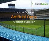 Super тяжелых Monofilament для сильного износа искусственных футбольных травы (ST)