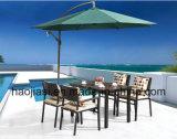 /Rattan esterno/presidenza & Tabella della mobilia di Polywood mobilia del giardino/patio/hotel ha impostato (HS 3001C & HS 7115DT) -2