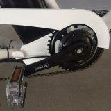 [إك] واللون الأخضر سوق [إيوروبن] درّاجة كهربائيّة مع [هي بوور] [موس]