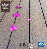 Outdoor piso em madeira de placa WPC Co-Extrusion deck composto de plástico