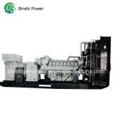 900kVA conjunto gerador a diesel com a ISO, Ce (BPM720) com motor Perkins