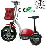 [48ف/12ه] بطارية اثنان [ست] درّاجة ثلاثية كهربائيّة الصين ([ن-تو201])
