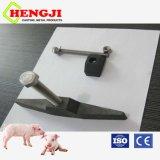 Strumentazione di azienda agricola del maiale che rinchiude l'ancoraggio dell'acciaio inossidabile T del fermo