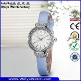 Orologio delle signore di modo del quarzo della cinghia di cuoio del ODM (Wy-084C)