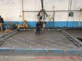 Гарантия качества сетка из нержавеющей стали Net/Sns защиты сетка