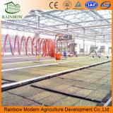 Sistema di irrigazione goccia a goccia di risparmio dell'acqua dell'azienda agricola