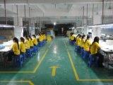 De Verpakking van de lading in het Entrepot van China
