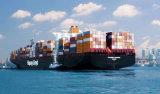 Consolidação de frete marítimo LCL Guangzhou para a Bulgária