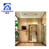 Les petits ascenseurs pour les foyers ascenseur