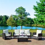 Poli rattan/mobilia esterna del sofà giardino di vimini di svago