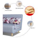 Muebles de Salón plegado futon sofa cama con armazón de metal