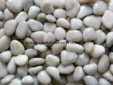 Rio Amarelo de pedra polida Pebble Pavimento para decoração e construção de pedra, Paisagem