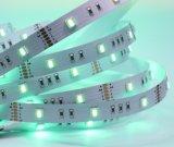 Rgbww пять цветных 5 микросхемы смены цветов красочный гибкие светодиодные полосы для мечты освещения