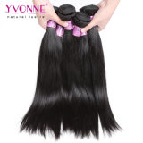 Yvonne recta natural del cabello Cabello Virgen camboyano bruto