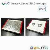 금성 4 고성능 LED는 승인된 증명서에 가볍게 증가한다