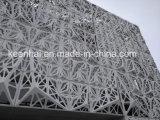 Het geperforeerde Comité van de Voorzijde van het Metaal van het Blad van het Aluminium Moderne Bouw